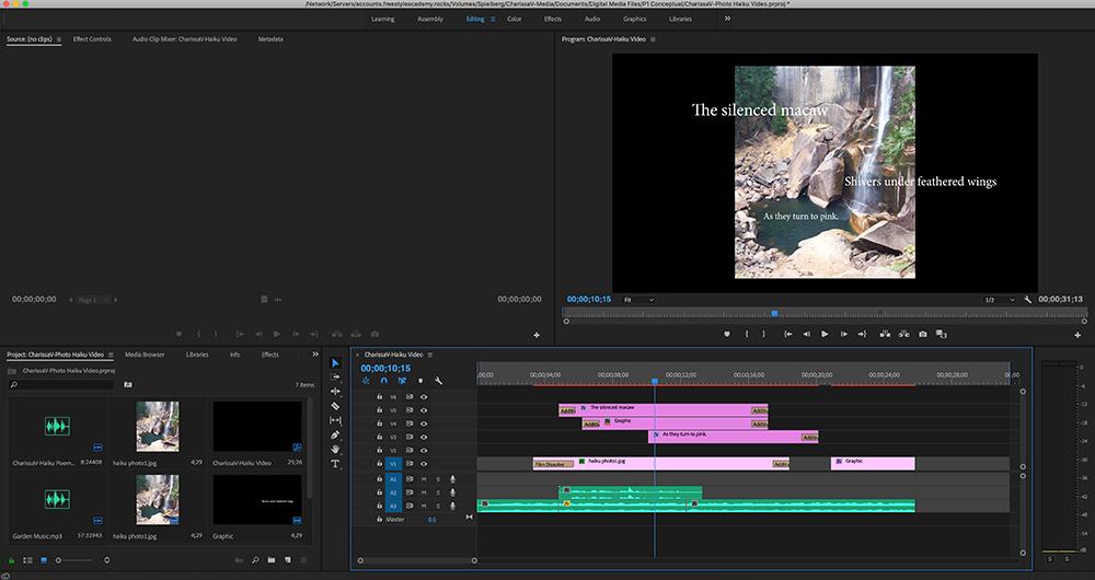 A screenshot of Premiere Pro, showing editing of the video haiku.