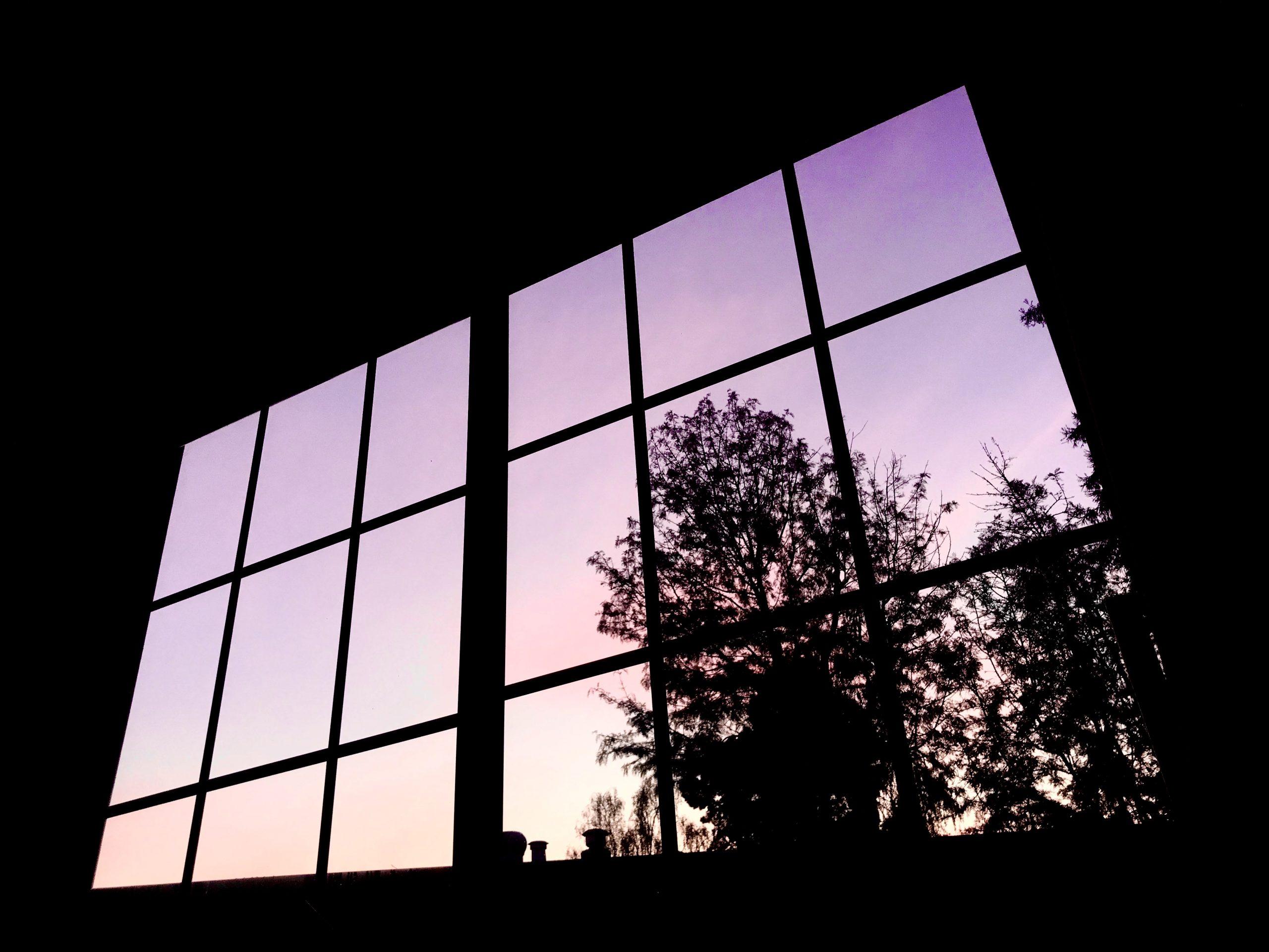 A window and a purple sky with trees.