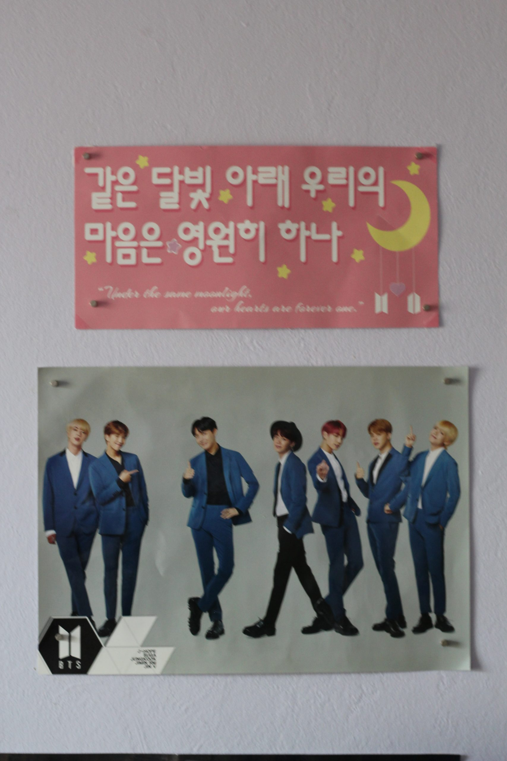 There are two posters of BTS in the picture. One of them is a more traditional postr of the group and the other is a pink concert sign with a Korean phrase on it.