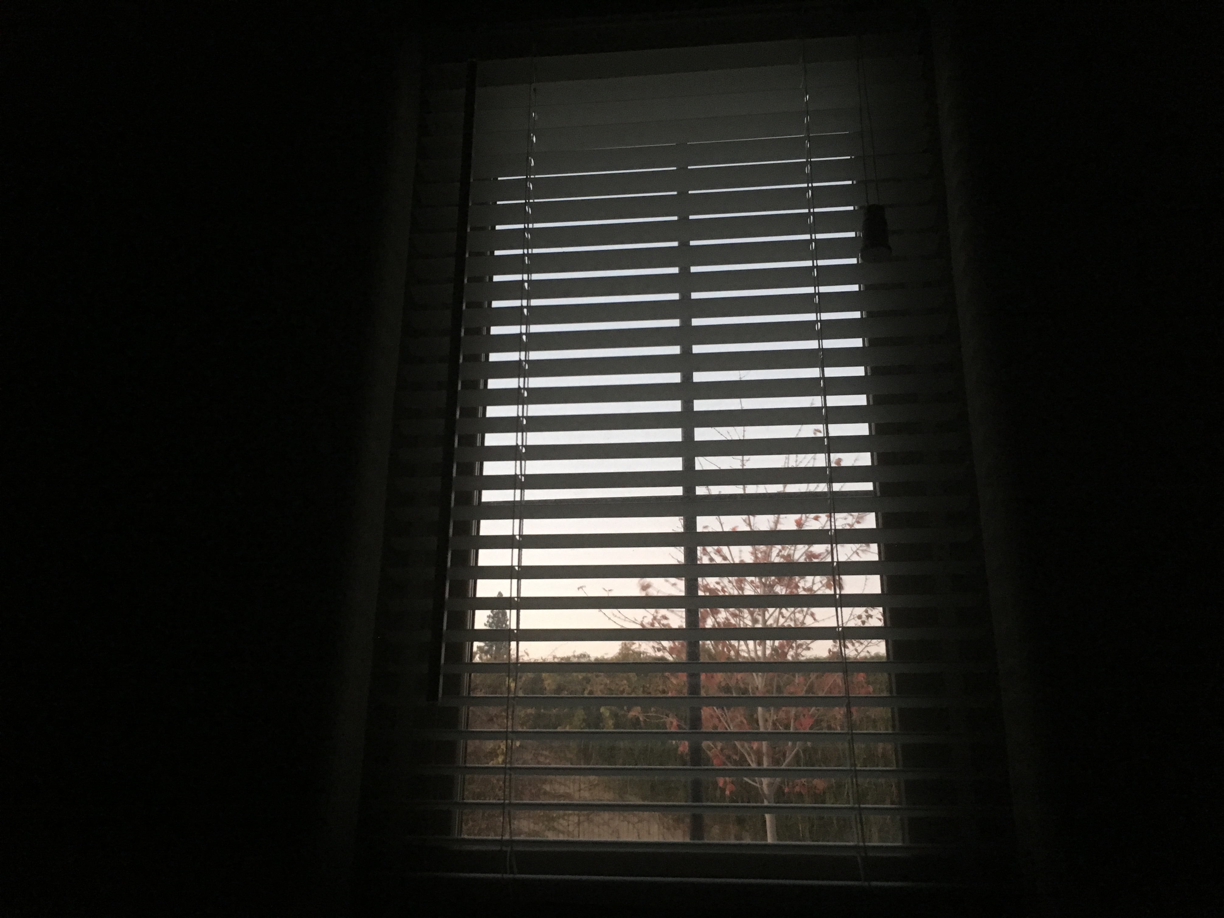 Image of a window in a dark room.
